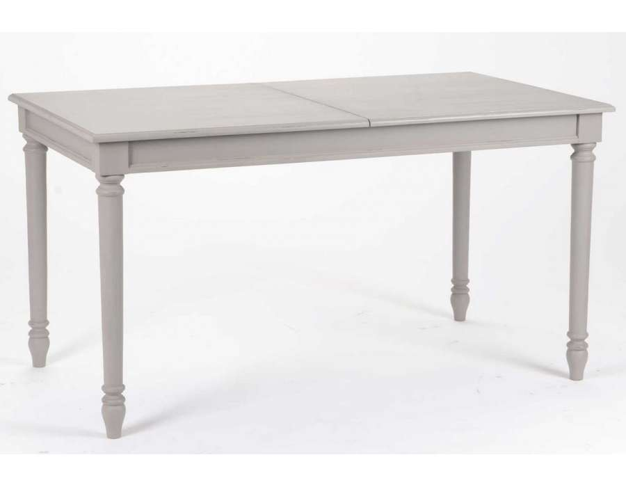 Table grise avec rallonge conceptions de maison for Table 160 cm avec rallonge
