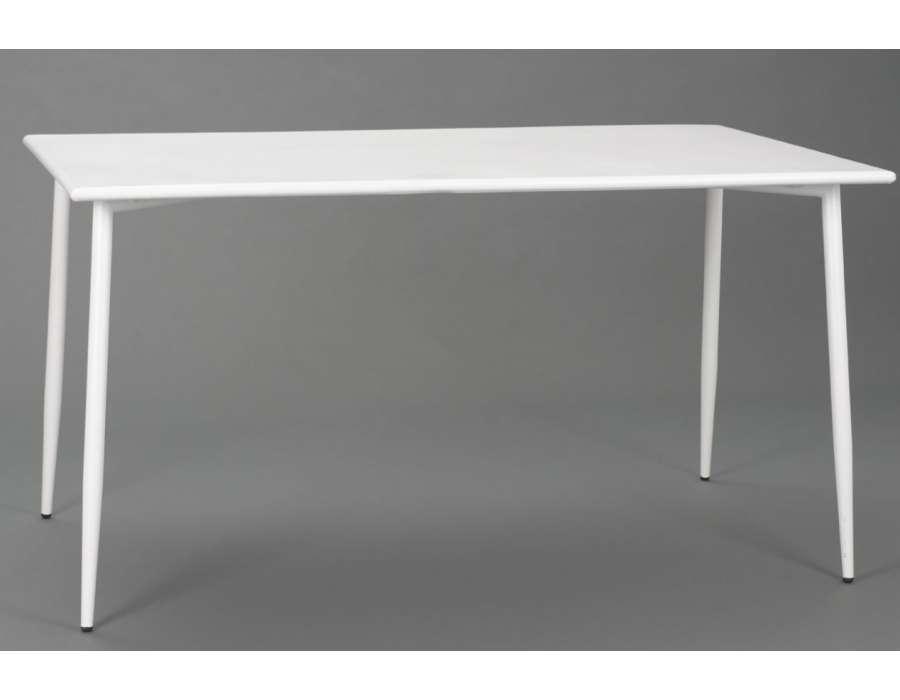 Table De Jardin Blanche Rectangulaire Des