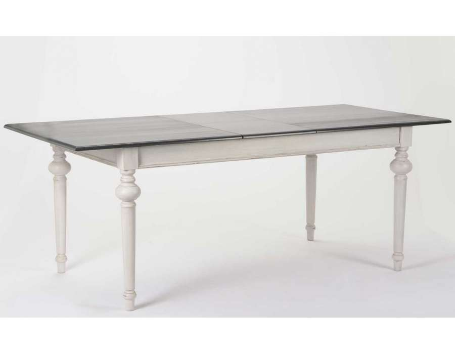 Table 160 cm grise avec rallonge amadeus for Table de salle a manger grise