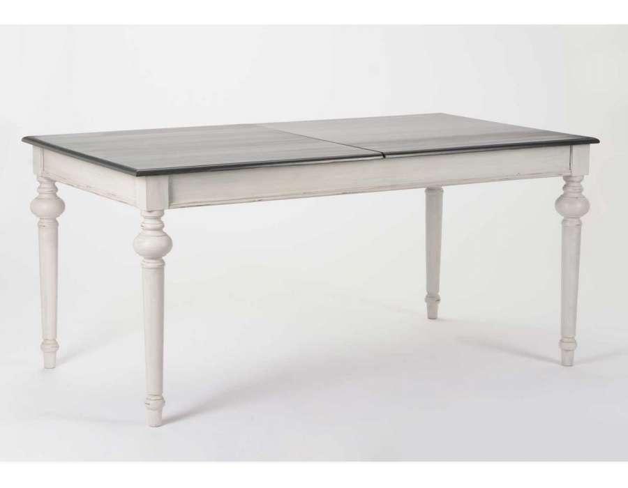 Grande table grise avec rallonge