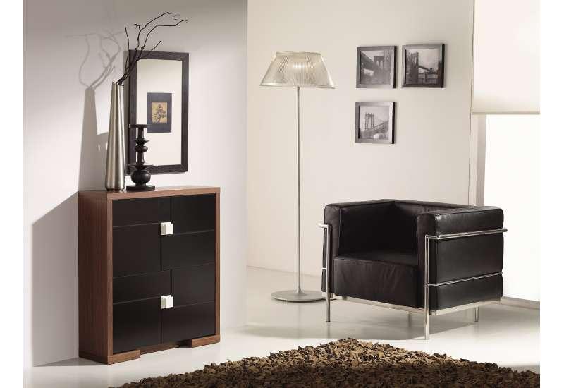 Meuble Design à chaussures bois et noir