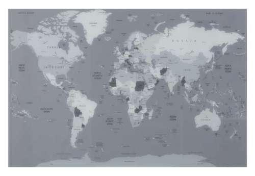 Décoration Murale Planisphere Verre Gris